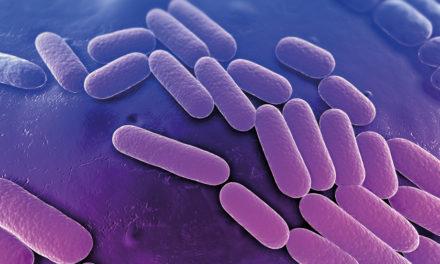 L'epidemia da Klebsiella:<BR>una sfida per il S.S.T.