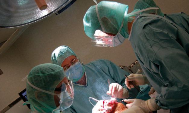 Innovazioni in chirurgia:<BR>la protesi del ginocchio
