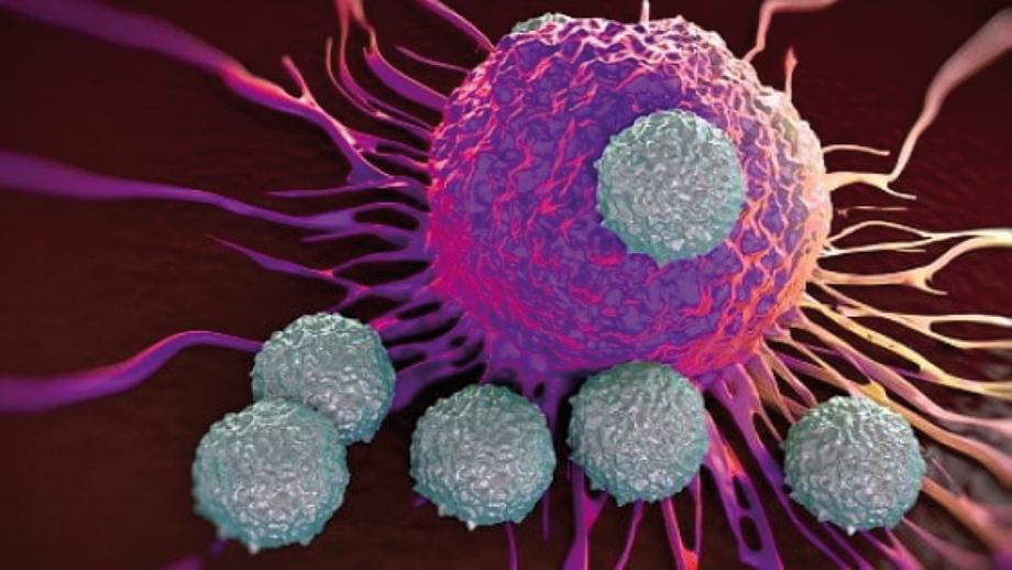 Immunologia e cancro:<BR>dal vecchio al nuovo